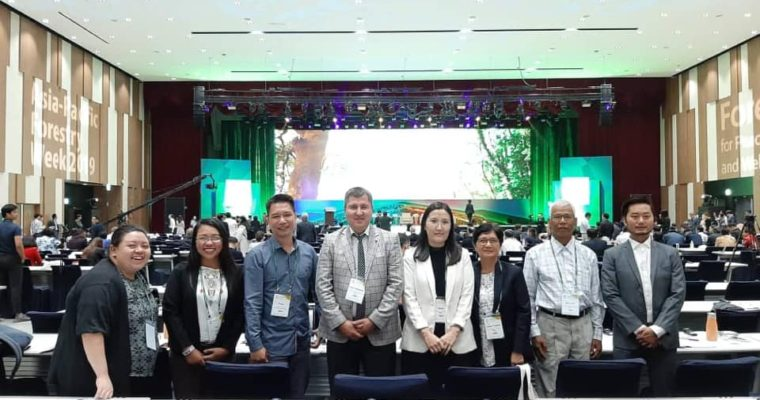 AFA members participate in the Asia-Pacific Forestry Week 2019
