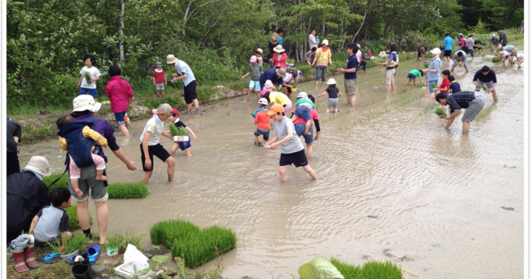 Menno Village, Hokkaido, Japan: Community Supported Agriculture