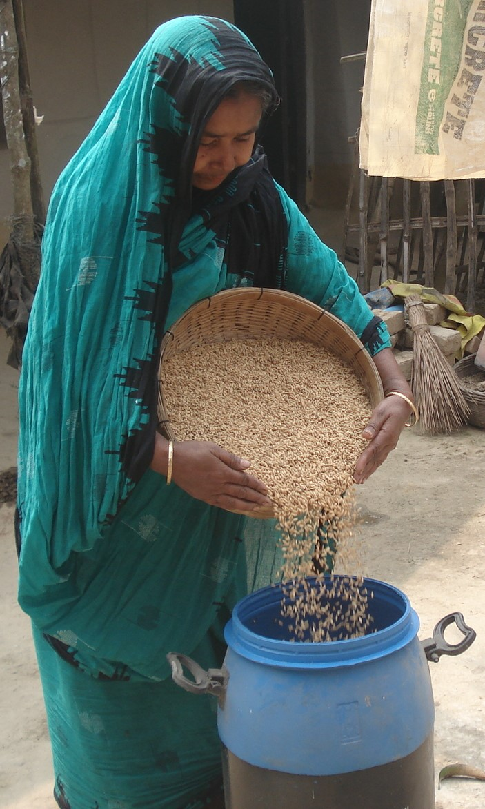 From Maria Seed Technology Model to WISE Model – Asian