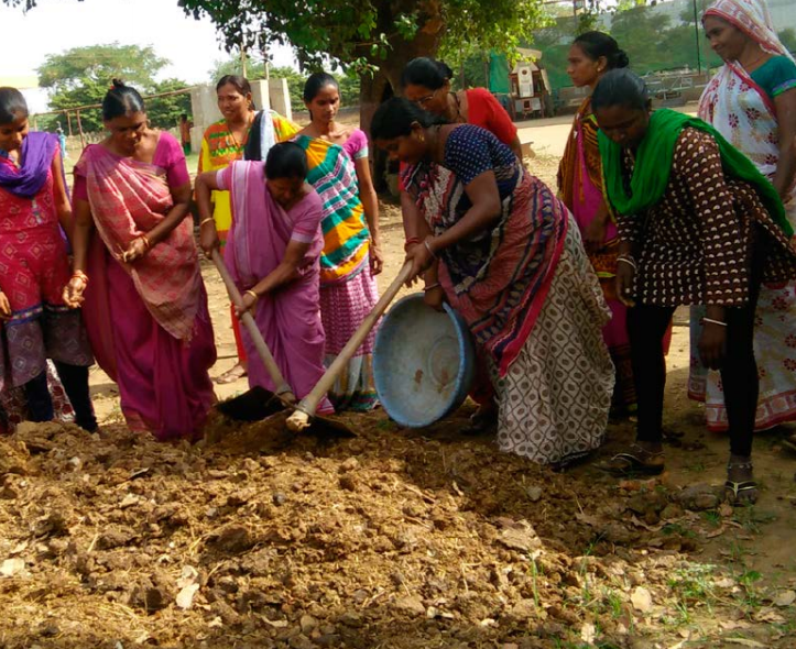 INDIA: Organic agriculture nurtures the soil and feeds the community