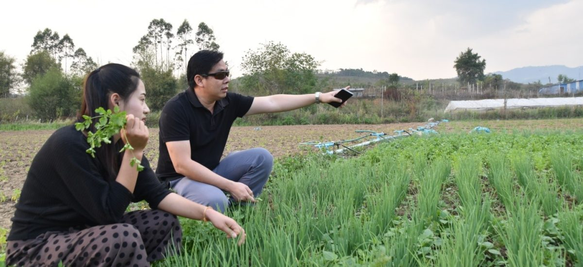 Establishing a partnership between the farmers and the buyers